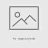 Lush Lounge Chair