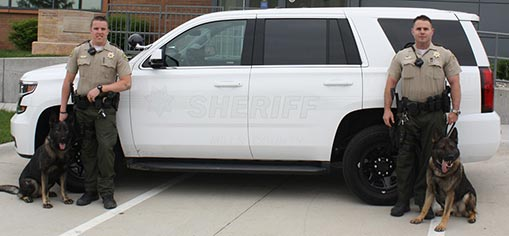 White Ghosted Sheriff Vehicle Markings